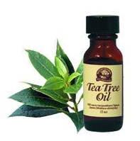 Масло чайного дерева NSP
