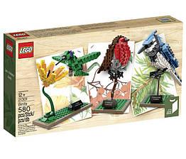 Lego Ideas Птицы 21301