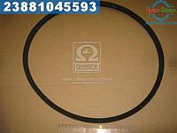 ⭐⭐⭐⭐⭐ Ремень SPВ 1280 (УБ-1280) (производство  Rubena)  SPB 1280