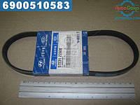 ⭐⭐⭐⭐⭐ Ремень гидроусилителя (производство  Mobis)  5723122000