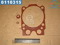 ⭐⭐⭐⭐⭐ Ремкомплект двигателя (3 наименований ) (красное) (производство  Украина)  740.1003209