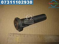 ⭐⭐⭐⭐⭐ Болт колеса задний (производство  Украина)  6510-3104008