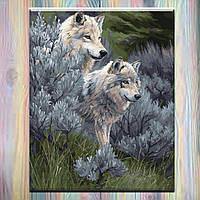 """Картина по номерам, Идейка, 40х50см, животные """"Пара волков 2"""", на холсте с подрамником, без коробки"""