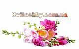 Интернет-Магазин  искусственных цветов  Kvitochky