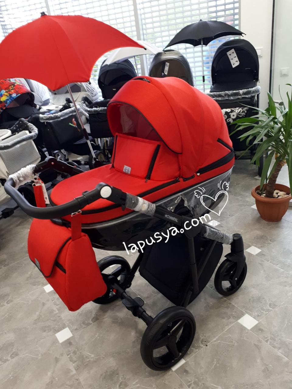 Дитяча коляска 2 в 1 Adamex Chantal
