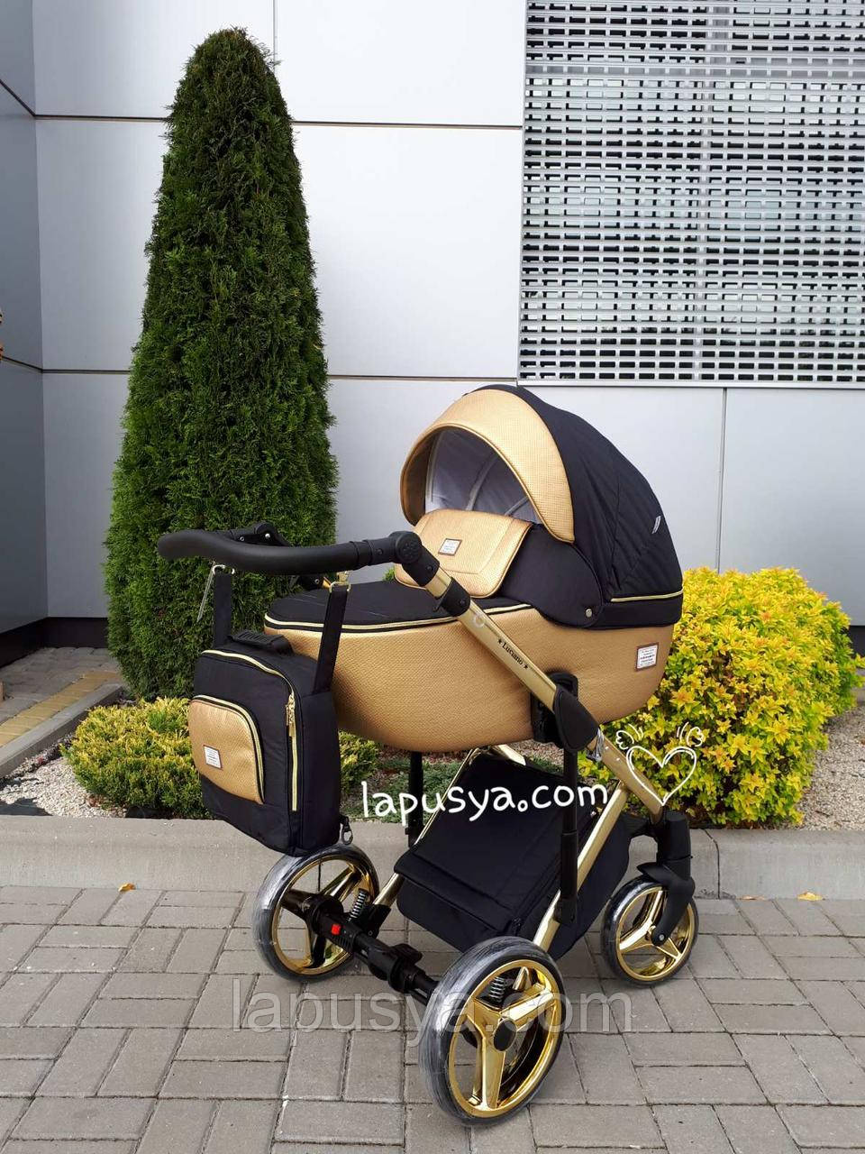 Дитяча універсальна коляска 2 в 1 Adamex Luciano PolarGold