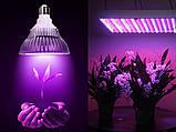 Фіто-Прожектор LED Full spectrum cob 50W 4500Lm, фото 3