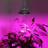 Фіто-Прожектор LED Full spectrum cob 50W 4500Lm, фото 5