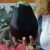 Баклажан Сара F1 (Sara F1) 20 (Cora Seeds) (перефасовано Vse-semena), фото 1