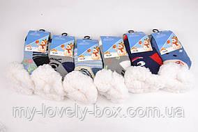 ОПТОМ.Детские носочки на МЕХУ с тормозами (Арт. C301-2/12-24) | 6 пар