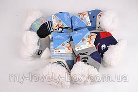 ОПТОМ.Детские носочки на МЕХУ с тормозами (Арт. C301-2/0-12) | 6 пар