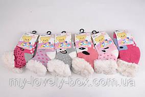 ОПТОМ.Детские носочки на МЕХУ с тормозами (Арт. C301-5/12-24) | 6 пар