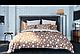 Двуспальное постельное белье ТЕП Ранфорс STAR BROWN, фото 2