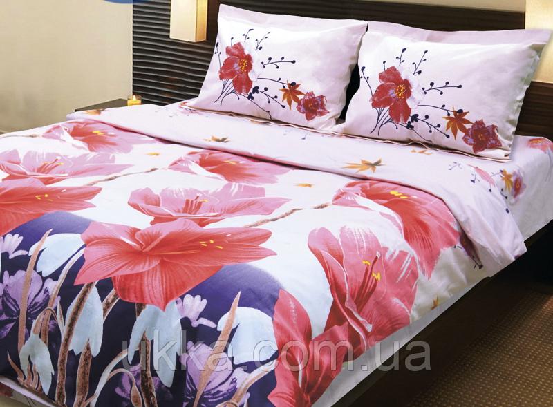 Двуспальное постельное белье Колорит премиум от Теп Лорен