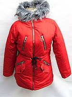 Поступление на оптовый склад - зимние женские куртки оптом из Китая