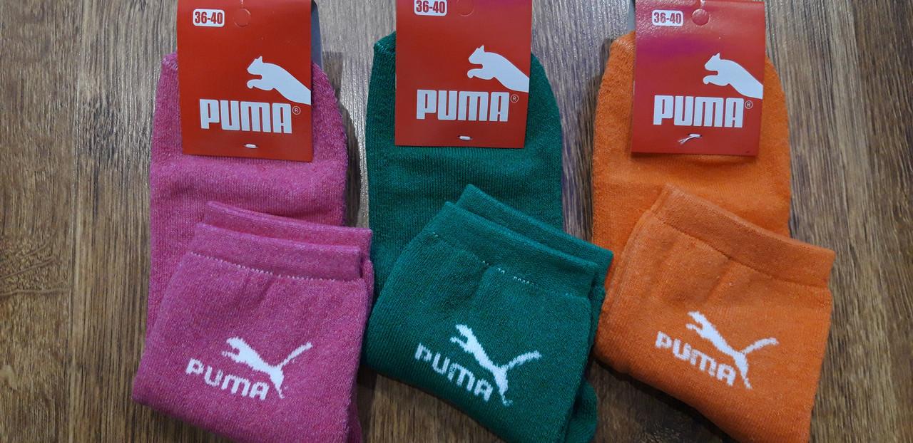 """Шкарпетки жіночі махрові в стилі """"Puma"""" яскраві.36-40"""