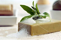 Лавровое мыло с лечебным эффектом