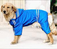 Дождевик для больших собак «Тропик», синий