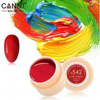 Гель краски и гель лак 2 в 1 Canni, №542