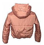Дутая розовая куртка с капюшоном, размеры 42 - 48, фото 8