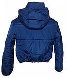Дутая зимняя куртка с капюшоном, цвет Электрик, много цветов, размеры 42 - 48, фото 9