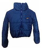 Дутая зимняя куртка с капюшоном, цвет Электрик, много цветов, размеры 42 - 48, фото 4