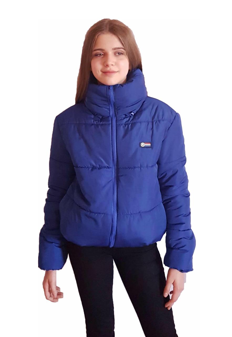 Дутая зимняя куртка с капюшоном, цвет Электрик, много цветов, размеры 42 - 48