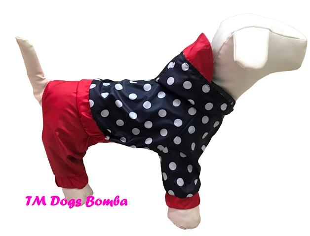 Дождевик для собак горошек DogsBomba