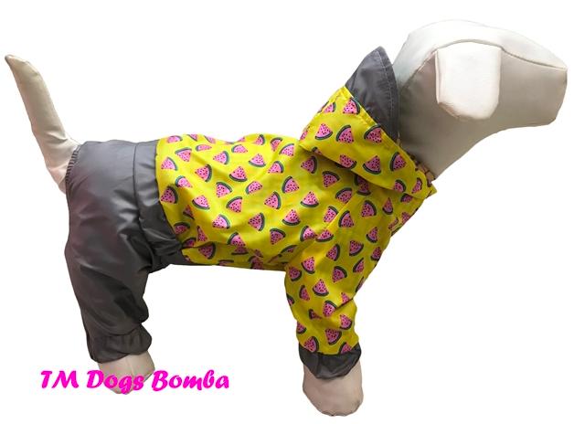 Дождевик для собак арбузы серый DogsBomba