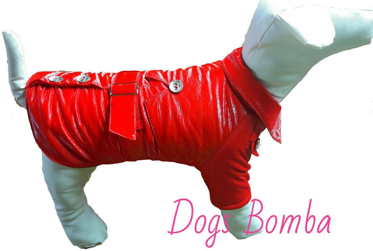 Плащ лаковый красный для собак DogsBomba