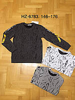 Кофта для мальчиков оптом, Active Sport, 146-176 см,  № HZ-6783, фото 1