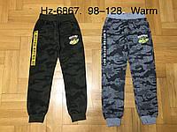 Спортивные утепленные штаны для мальчиков оптом, Active Sports, 98-128 см,  № HZ-6867, фото 1