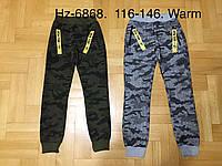 Спортивные утепленные штаны для мальчиков оптом, Active Sports, 116-146 см,  № HZ-6868, фото 1