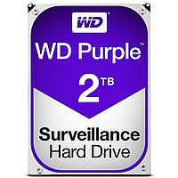 Жесткий диск 3.5 2TB Western Digital WD20PURZ, КОД: 1163201