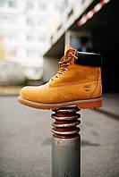 Стильные зимние ботинки Timberland (НА МЕХУ), фото 1