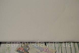 3348/100 Ткань для вышивания Newcastle , цвет - белый, 40ct