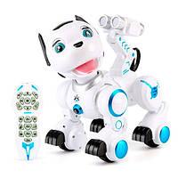 Робот K10 (Собака)