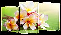 Модульная картина DK Store Классическая Коллекция Ветка Плюмерии 163х95см s187, КОД: 1223925