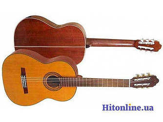Гитара CG 190