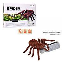 Павук на радіоуправлінні