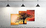 Модульная картина на холсте DK Store из трех частей Мудрое дерево SM3-t108, КОД: 1223001
