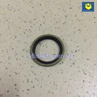Шайба с резиновым кольцом (d-20 mm)