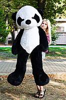 Плюшевая игрушка панда 200 см