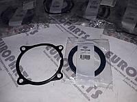 Ремкомплект термостата Iveco Stralis Trakker Ивеко Cursor EUROSTAR EUROTECH 24790.16  5801472356 5801472355, фото 1
