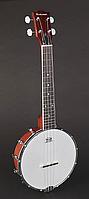 Банджо Richwood RMBU-404