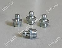 Маслянка 6КТ DIN 71412 Н1 М10х10
