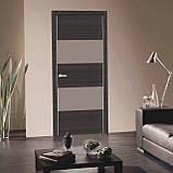 Дверь межкомнатная Омис Cortex Alumo 04 graphite wenge line, фото 2