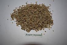 Морковь дикая семена 100 гр