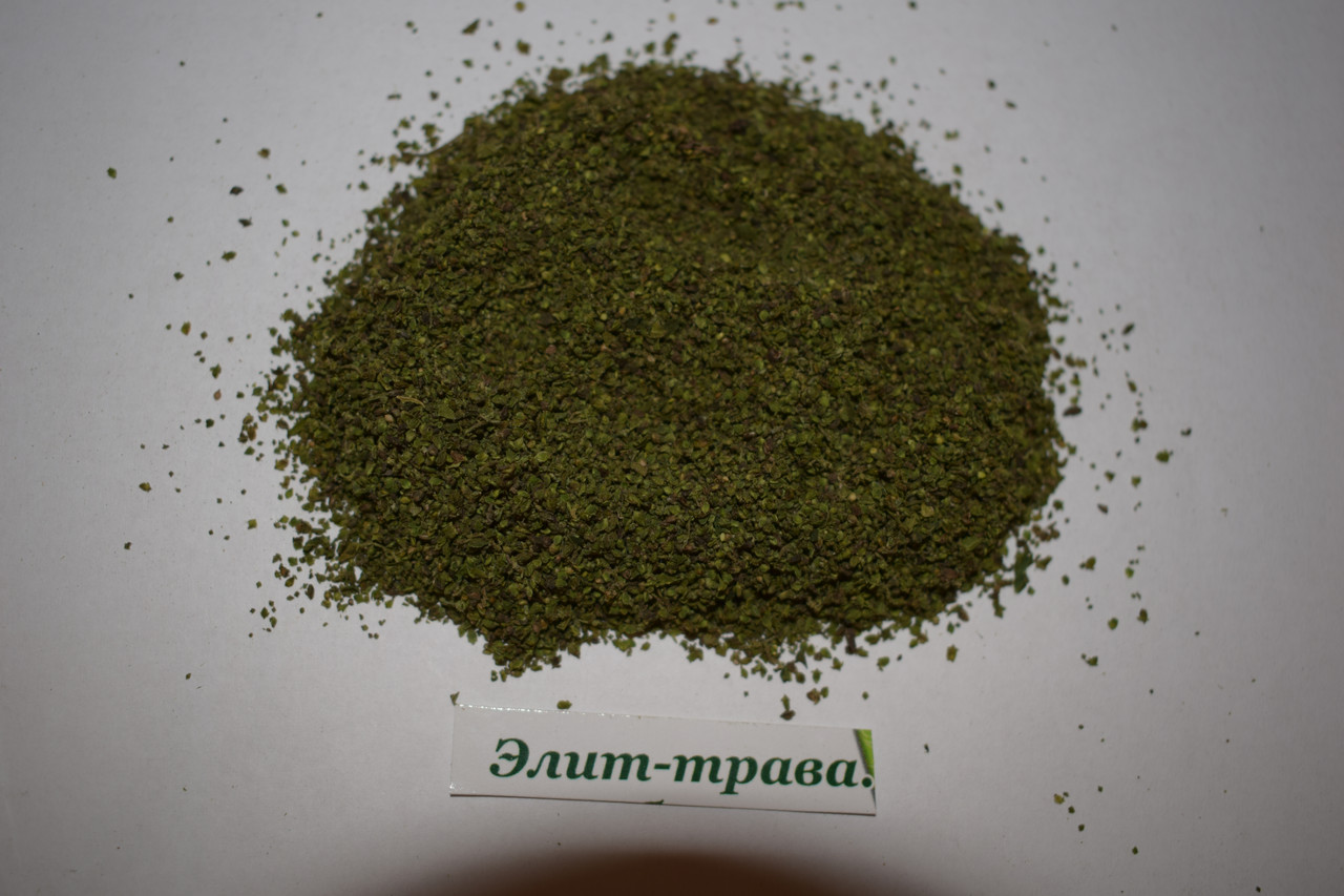 Картинка семена крапивы