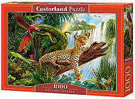 Пазл Castorland Пазлы на 1000 деталей «Леопард» CASTORLAND (C-104093) SKU_C-104093